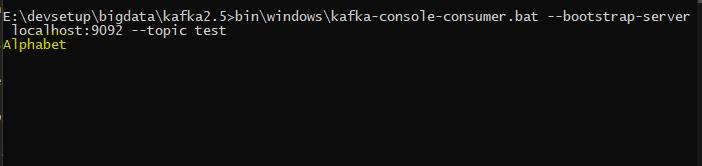 Kafka console consumer