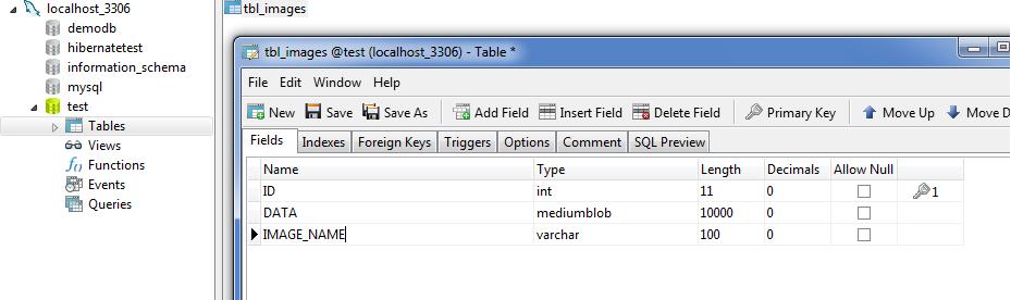 Hibernate example of insert/select blob from database